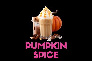pumpkin spice frozen yogurt powder pre mix